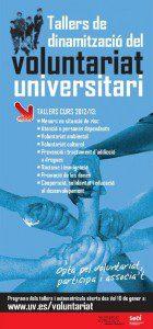 cartell UV voluntariat
